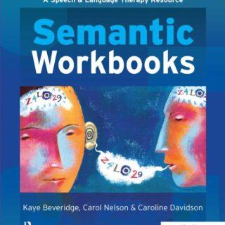 Semantic Workbooks